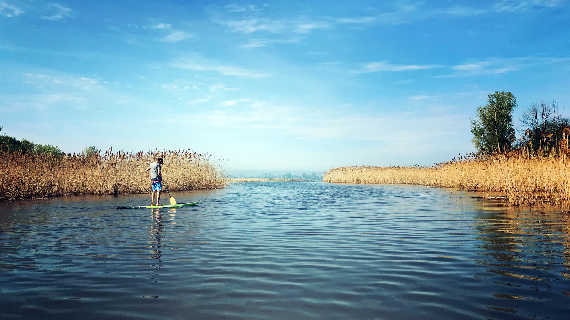 Paddle Climb Stand Up Paddleboard Sandusky Bay
